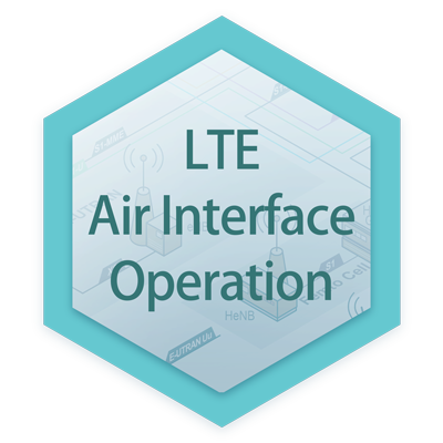 LTE Air Interface Operation