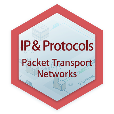 Packet Transport Networks