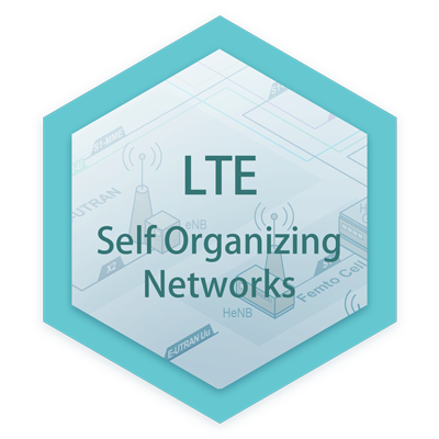 Self Organizing Networks